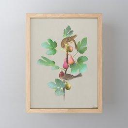 Rosefinches in Fig Tree Framed Mini Art Print