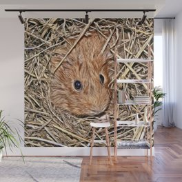 Painted Guinea Pig Baby Wall Mural