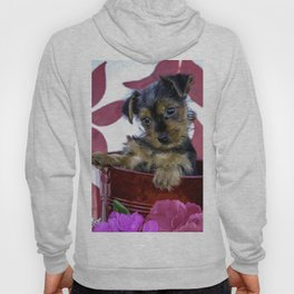 Tiny Yorkshire Terrier Puppy Sitting in a Red Basket with Purple, Pink, and Red Spring Flowers Hoody