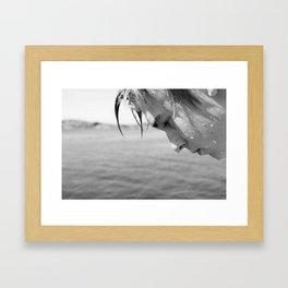 sebastian Framed Art Print