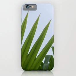 Tropical Palm Fan iPhone Case