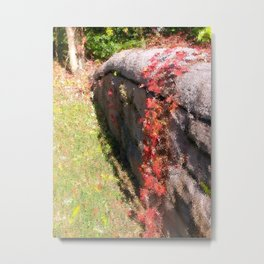 Stonewall in Color Metal Print