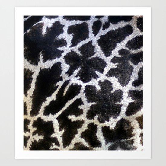 giraffe... close up Art Print