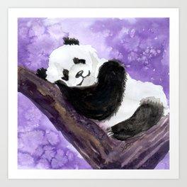 Panda bear sleeping Art Print