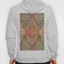 Geometric Leaves VII // 18th Century Distressed Red Blue Green Colorful Ornate Accent Rug Pattern Hoody