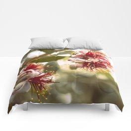 Botanical  Comforters