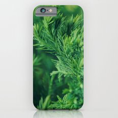Dreaming in green iPhone 6s Slim Case