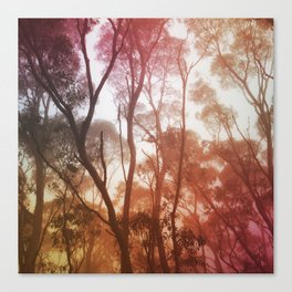 Hazy Canvas Print