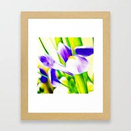 Fractalius iris Framed Art Print