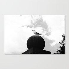 Seagull 2 Canvas Print
