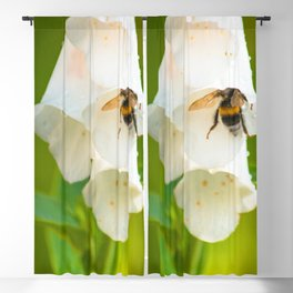 Bumblebee in the campanula Blackout Curtain