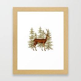 Wandering deer  Framed Art Print