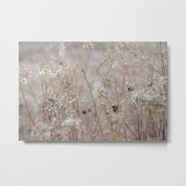 Wildflowers in the Autumn Metal Print