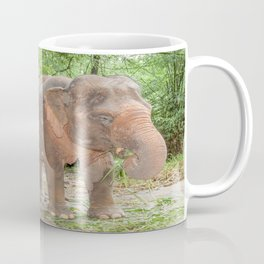 Thai (Asian) Elephant Enjoying a Snack Coffee Mug