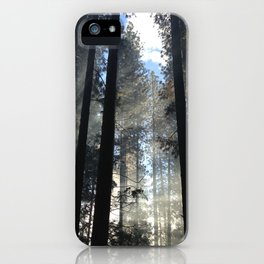 Enlightenment iPhone Case