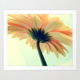 Flower in the spring Art Print