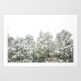 Lapse of Snow Art Print