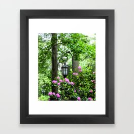 Lamppost Pink Framed Art Print