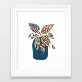 Potted Prayer Plant Framed Art Print