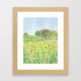 Field of Yellow Flowers Framed Art Print