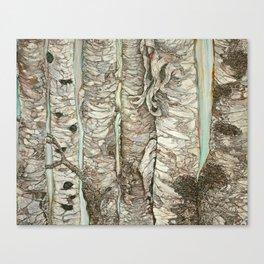 Birchen Forest Canvas Print