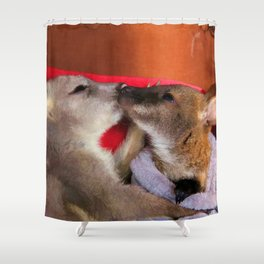 First Love  - Wallaby Babies Shower Curtain