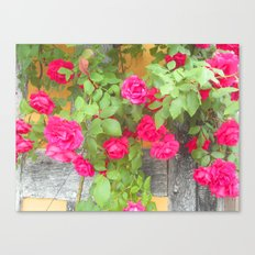 Tudor Rose Canvas Print