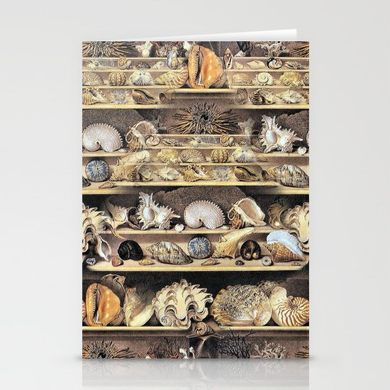 Vintage Shell Collection Stationery Cards