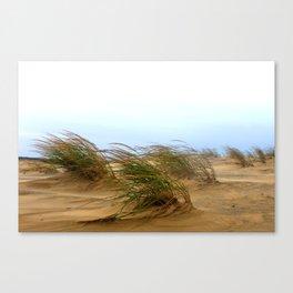 Dunes [1] Canvas Print
