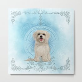 Cute little havanese puppy Metal Print
