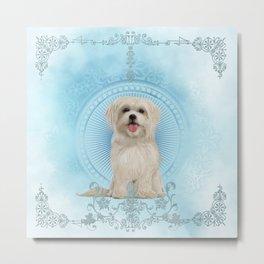 Cute little havanese puppy Metal Print
