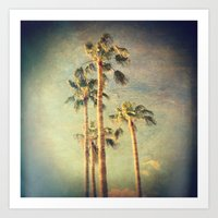 palms Art Prints featuring palms by Sylvia Cook Photography