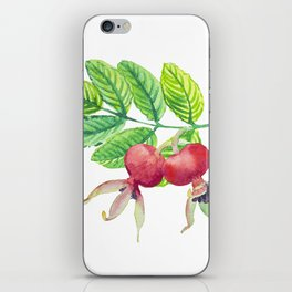 Branch leaves with a dog rose watercolor iPhone Skin