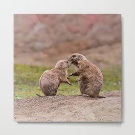 Cute little prairie dogs love Metal Print