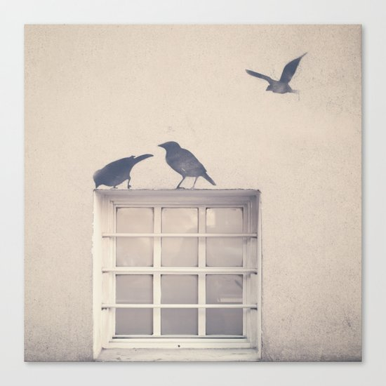 Let me be a bird in your window - vintage retro, beige cream, urban, black and white photography Canvas Print