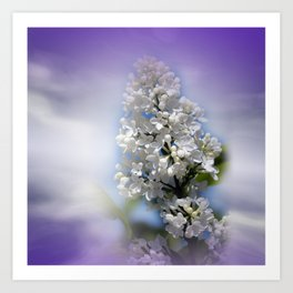 white lilac on textured background -a- Art Print