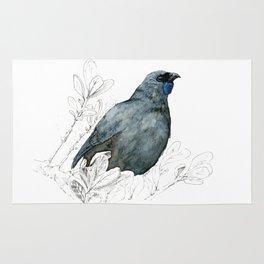 Kōkako, New Zealand native bird Rug