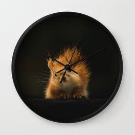 squirrel in the dark Wall Clock
