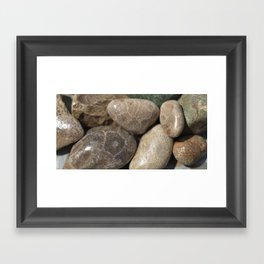 Petoskey Stones Framed Art Print