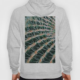 Cactus plant close up Hoody