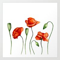 poppies Art Prints featuring Poppies by Julia Badeeva