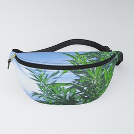 CannaBliss Fanny Pack