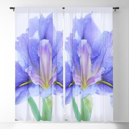 Iris flower Blackout Curtain