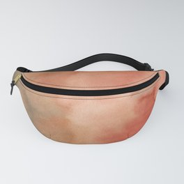 Abstract No. 410 Fanny Pack