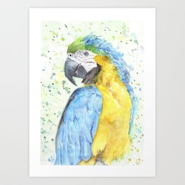 "Watercolor Painting of Picture ""Macaw"" Art Print"