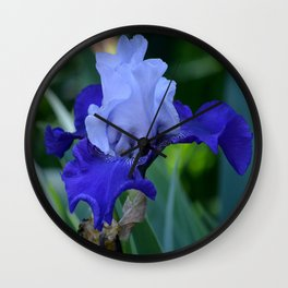 Nature's Blue Wall Clock