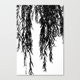 willow bw Canvas Print