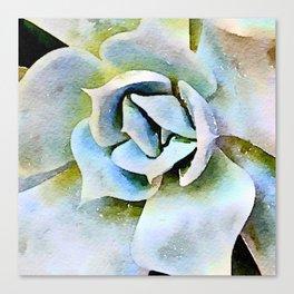 Shady Succulent Canvas Print