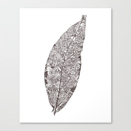 LEAF skeleton_06 Canvas Print