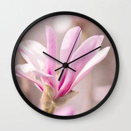 spring stars Wall Clock